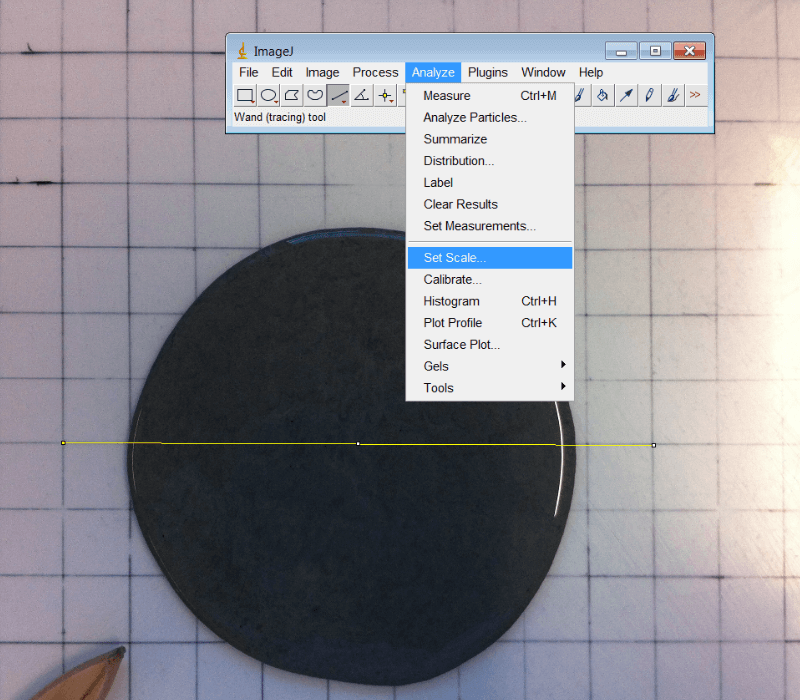 How to Compute the Area of Irregular Shapes using ImageJ