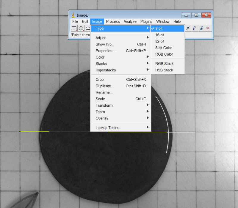 How to Compute the Area of Irregular Shapes using ImageJ ...