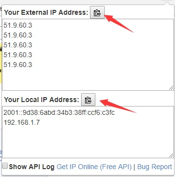 What is My IP Address? with API