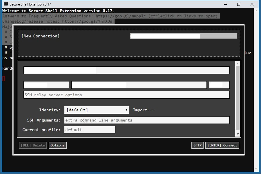 The Secure Shell (SSH) Chrome Extension developed by Google